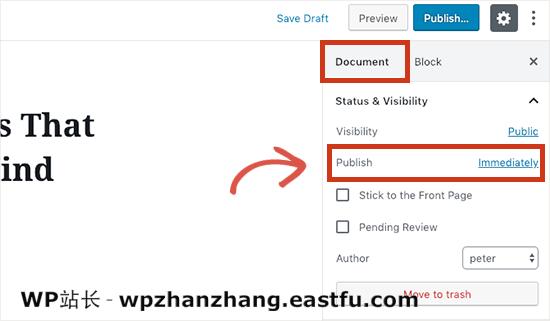WordPress发布日程安排选项