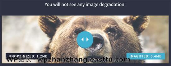 WordPress中的优化图像与未优化图像