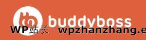 BuddyBoss主题评测:可以成为完美的会员网站主题吗?