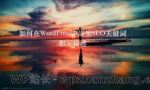 如何在WordPress中添加SEO关键词和元描述
