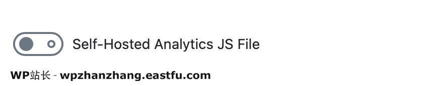 自托管的Analytics JS文件