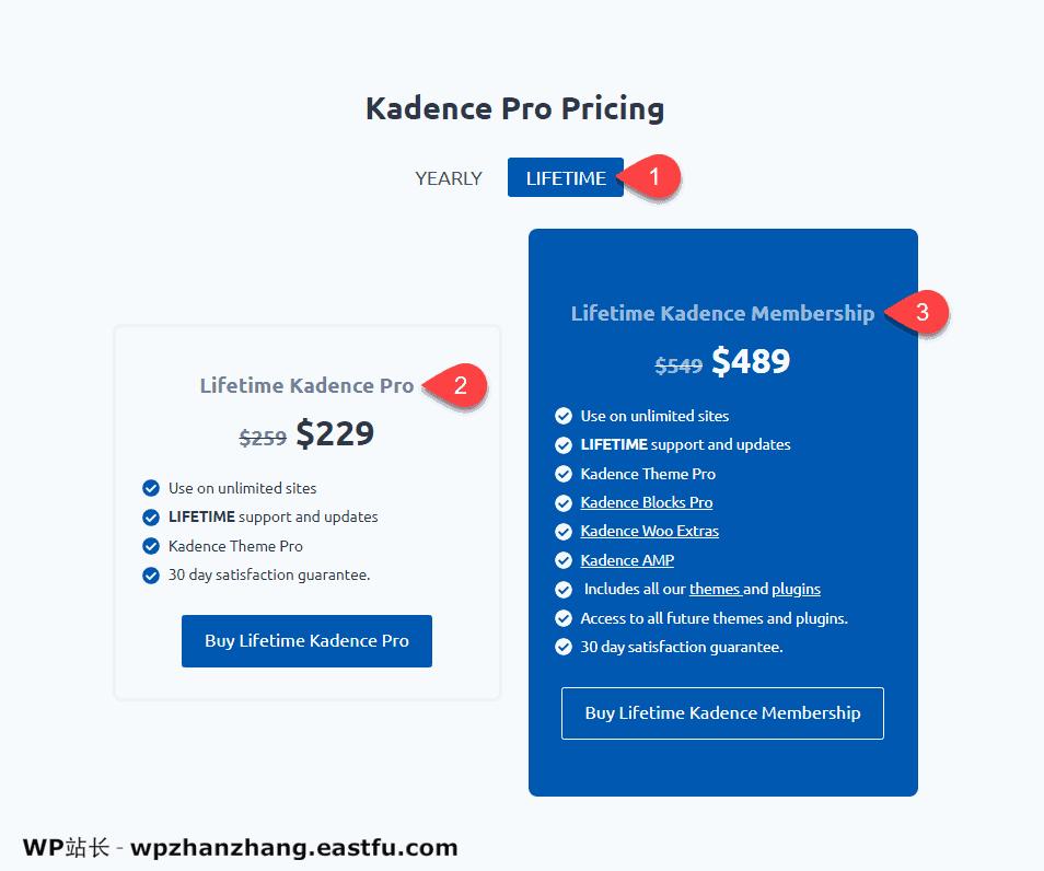 Kadence Theme WordPress主题评测2021 2