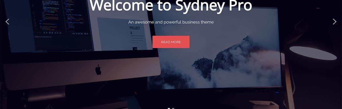2021年35个最佳WordPress企业主题和商业主题