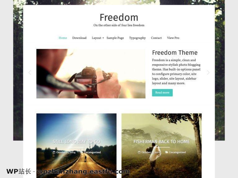2021 年 35+ 最佳免费 WordPress 博客主题 26