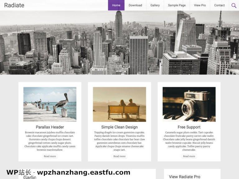 2021 年 35+ 最佳免费 WordPress 博客主题 33