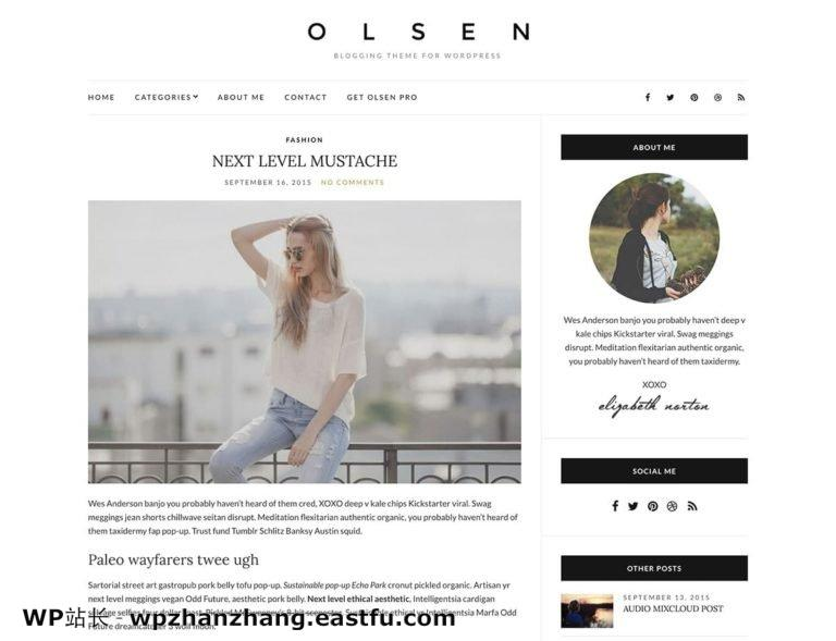 Olsen-light尔森之光