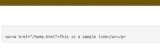 在WordPress中手动显示代码